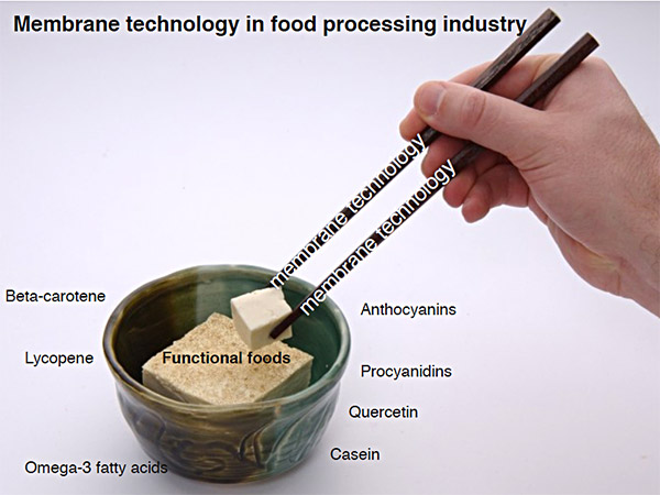 food-processing-industry-d01